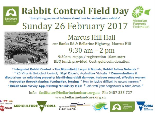 Rabbit Field Day Flyer